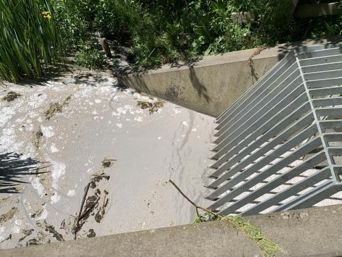 Sewage flowing out of the Channelsea River culvert